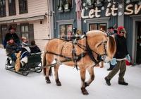 Horse drawn sleigh, Storgata, Lillehammer