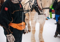 Horse drawn sleigh and traditional dress, Storgata, Lillehammer