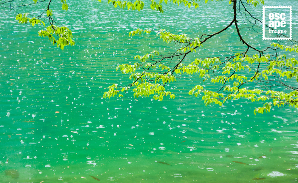 The rainy waterworld of Plitvice Lakes